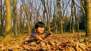 屋外,散歩,枯葉,枯れ木,子供,2歳,おでかけ