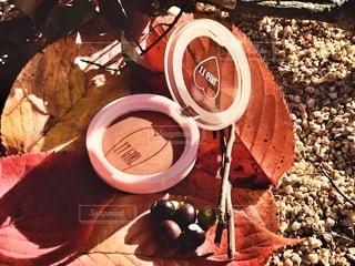 自然,屋外,葉,季節,影,光,可愛い,メイク,美容,ブラウン,カラー,色,コスメ,化粧品,プチプラ,置き画,ダイソー,アイシャドウ,メイク道具,DAISO