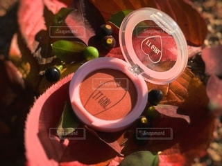 自然,屋外,植物,葉,木の実,季節,影,光,可愛い,メイク,美容,ブラウン,カラー,色,コスメ,化粧品,100円,プチプラ,置き画,ダイソー,アイシャドウ,メイク道具,DAISO