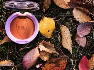 自然,屋外,葉,季節,影,光,可愛い,メイク,美容,ブラウン,カラー,色,クール,コスメ,化粧品,100円,プチプラ,置き画,ダイソー,アイシャドウ,メイク道具,DAISO