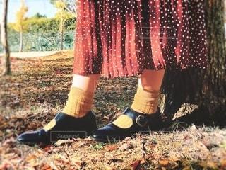 マスタードカラーの靴下の写真・画像素材[2780094]