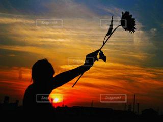 女性,1人,自然,空,花,屋外,太陽,雲,夕暮れ,暗い,景色,シルエット,光,夕陽,グラデーション