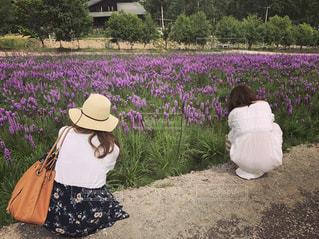 風景,花,後ろ姿,帽子,人物,背中,人,後姿,むらさき