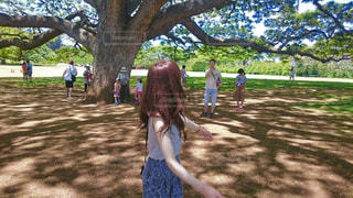女性,公園,木,屋外,後ろ姿,木漏れ日,光,大木,人物,背中,人,風,長い髪