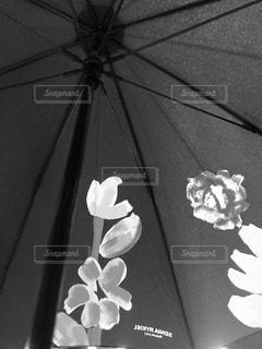傘,骨,柄,肢