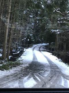 雪道の写真・画像素材[2212235]