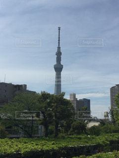 神社 - No.576368