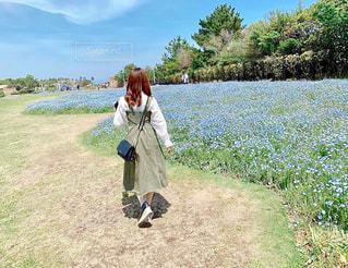 花,お花畑,屋外,青,後ろ姿,紫,人物,背中,人,後姿,ネモフィラ,淡路島,色,青紫