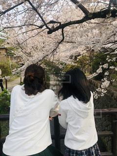 木の隣に立っている人の写真・画像素材[2130610]