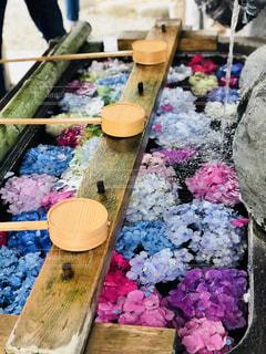 紫陽花のテーブルの写真・画像素材[2260689]