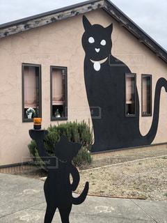 建物の前に立っている猫の写真・画像素材[2291565]