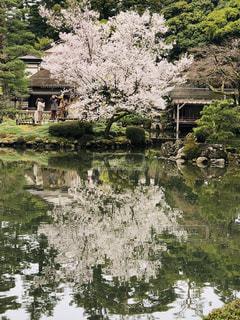 水に囲まれた家の写真・画像素材[3066085]