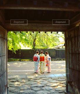 後ろ姿,人物,人,後姿,門,玄関,和装,秋田,角館,武家屋敷,三人娘
