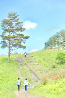 小高い丘 への 小径の写真・画像素材[2080788]