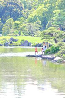 池のほとりでほのぼのの写真・画像素材[2080948]