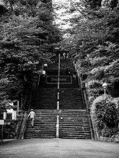 時の流れが刻まれる階段の写真・画像素材[2147118]