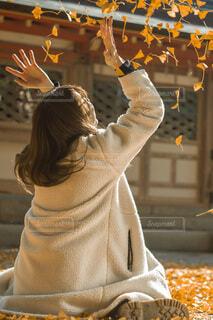 紅葉を投げている女性の写真・画像素材[3745849]