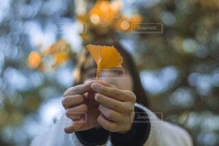 傘を持つ手の写真・画像素材[3745848]