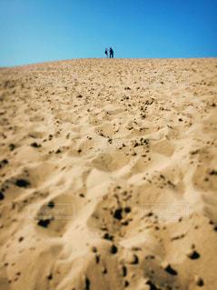 空,砂,青,後ろ姿,茶色,人物,人,砂丘,鳥取砂丘