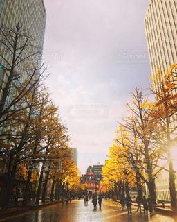 空,ビル,雨,屋外,レンガ,都会,外,人,水溜り,夕陽,雨上がり,札幌,街中,道庁,雨の日