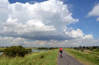 空,夏,自転車,屋外,雲,後ろ姿,夏空,サイクリスト,サイクルロード