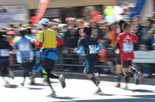 スポーツ,後ろ姿,背中,マラソン,東京マラソン,ランナー,選手たち