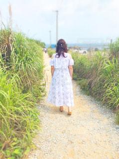 女性,風景,屋外,後ろ姿,沖縄,新緑,人,写真,草木
