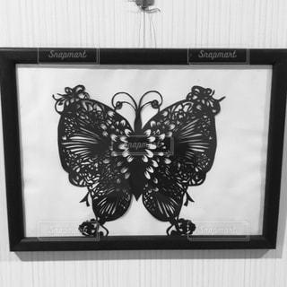 黒い蝶の写真・画像素材[3354353]