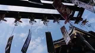 風車と短冊の写真・画像素材[3401921]