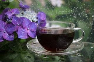 インテリア,花,コーヒー,COFFEE,雨,アイスコーヒー,水滴,紫陽花,食器,ガラステーブル,珈琲,梅雨,ガクアジサイ,雨の日,ガラスの器,アイス珈琲,ガラスのカップ