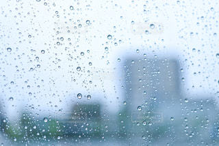 雨の雫の写真・画像素材[2181042]