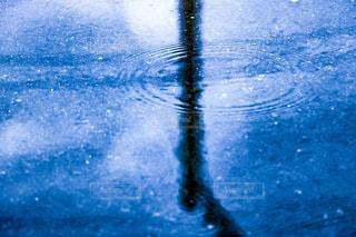 水たまりに映る波紋と水鏡の写真・画像素材[2218812]