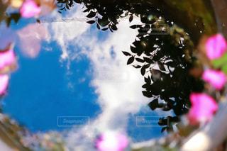 雨あがりの水たまりに映る青空の写真・画像素材[2218944]