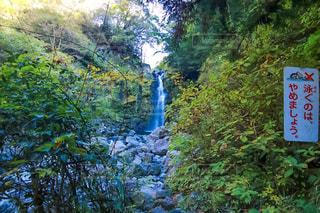滝にあった看板の写真・画像素材[2219420]