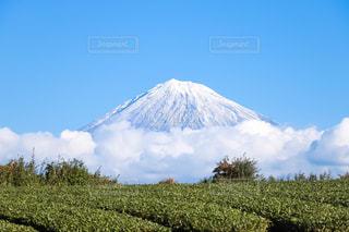 かいまき笹雲の写真・画像素材[2411648]