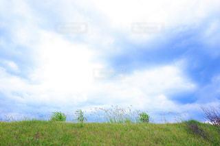 下から見上げた空と土手の写真・画像素材[2458954]
