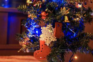 夜にライトアップされたクリスマスツリーの写真・画像素材[2825793]