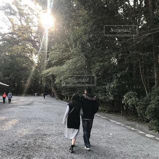 木漏れ日,朝,伊勢神宮,内宮
