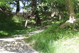 弘前公園の天守閣へと続く階段の写真・画像素材[2151732]