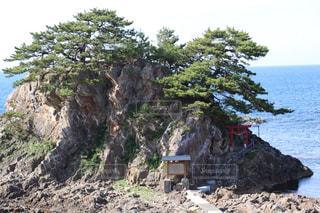 孤島に浮かぶ赤い鳥居がある神社の風景の写真・画像素材[2329678]