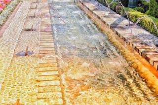 公園,水,水滴,水しぶき,庭園,噴水,たくさん