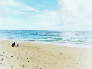 沖縄の思い出の写真・画像素材[2145401]