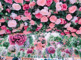 ピンクのフラワーガーデンの写真・画像素材[2128694]