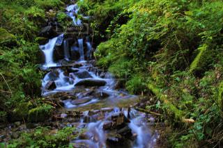 森の中の滝の写真・画像素材[2095176]