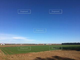 青い空と大地。オリジナル画像です。の写真・画像素材[2234079]
