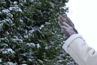 雪の中で手を上に上げている女性の写真・画像素材[2813237]