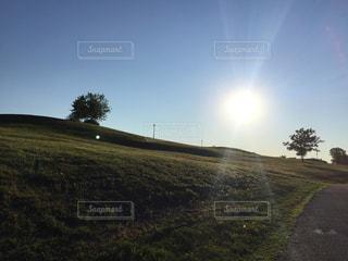 空,公園,芝生,屋外,太陽,晴天,散歩,光,丘,みどり,お散歩,おでかけ
