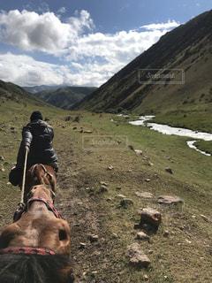 後ろ姿,旅,馬,キルギス