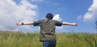 空,屋外,晴れ,後ろ姿,草,人物,背中,新緑,人,後姿,天気,日中