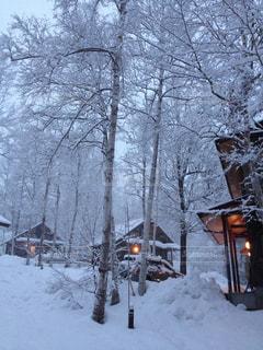 雪に覆われたコテージの写真・画像素材[2810916]